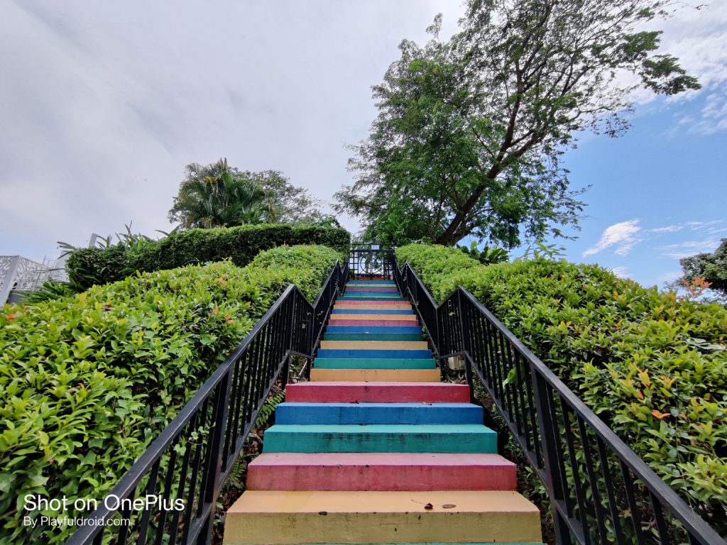 OnePlus 8T Ultra-wide Sample #2