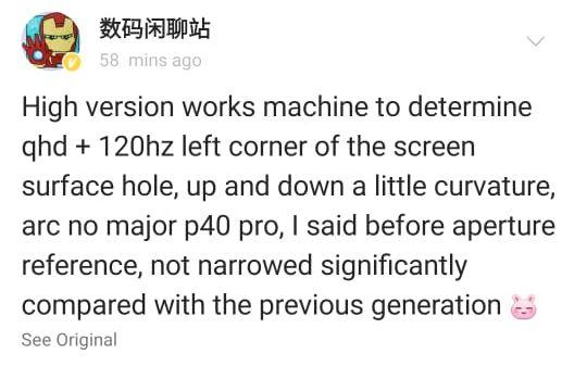 Xiaomi Mi 11 Pro display leak